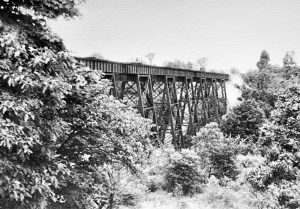 1908 Freight RR Bridge over valley East of Brandywine Falls