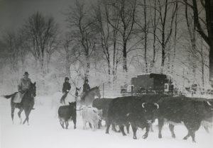 Cyrus Eaton - Acadia Farms on his birthday 12-27-1961