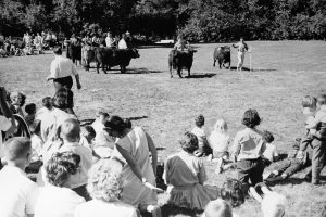 Sigma Delta Chi Picnic at Acadia Farms 9-5-1964